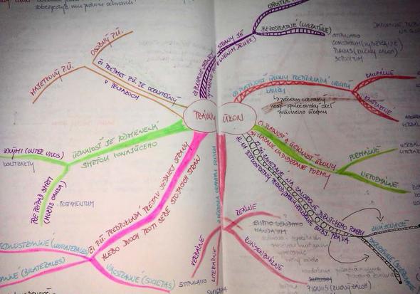 Myšlienkové mapy