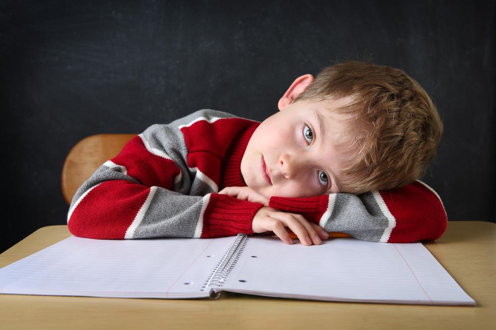 Adaptácia detí v škole