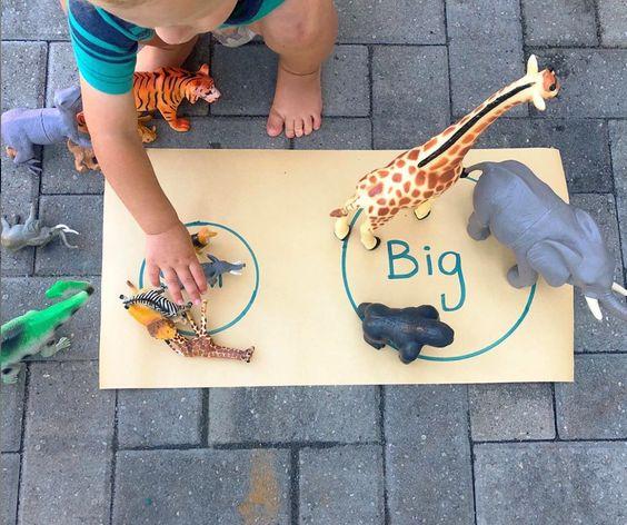 Triedenie zvieratiek podľa veľkosti. Foto: Little Meadow Child Care
