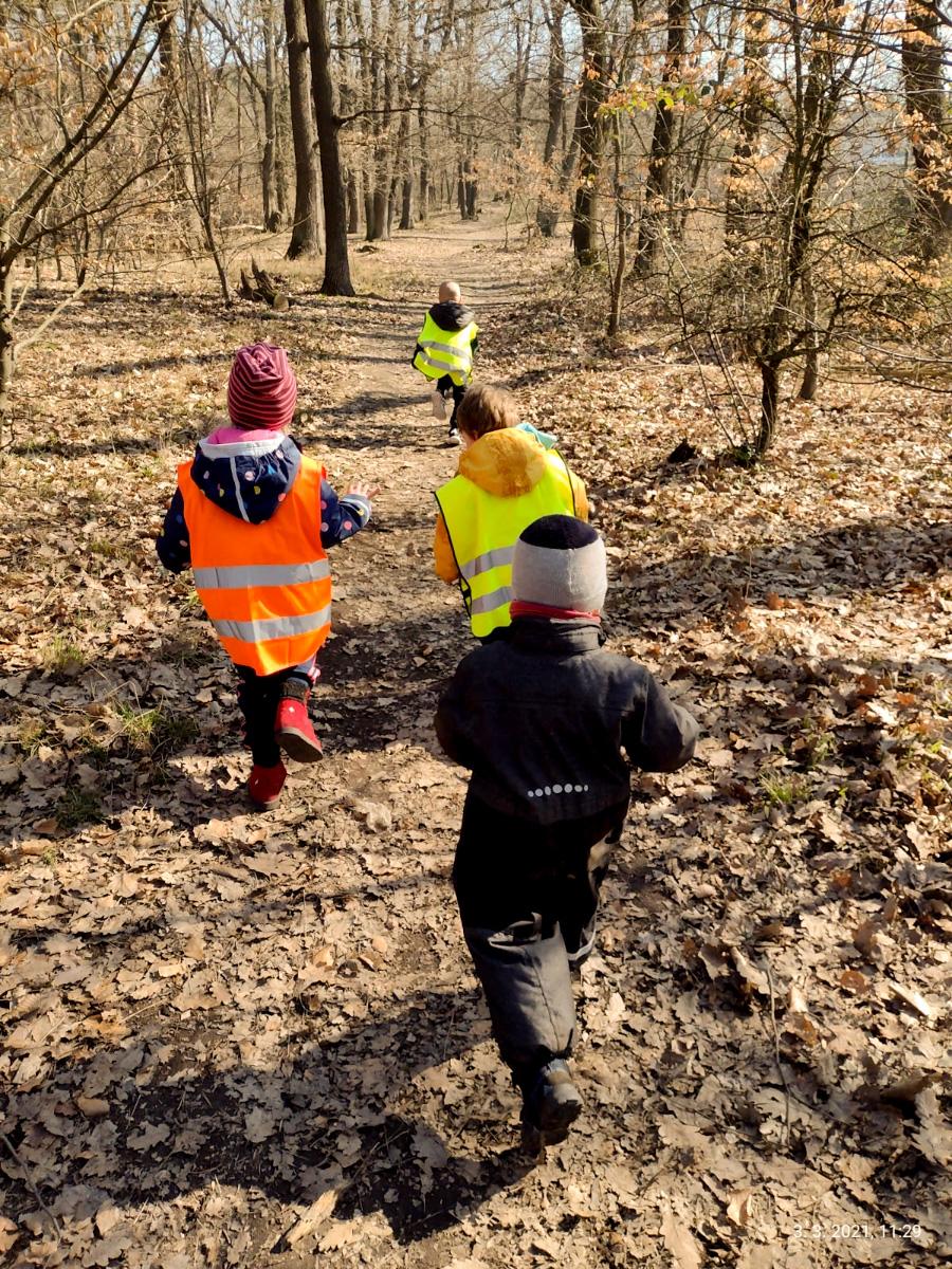 Ranný beh škôlkarov voňavým lesom, ktorý susedí s materskou školou littleBIG. / Foto: littleBIG