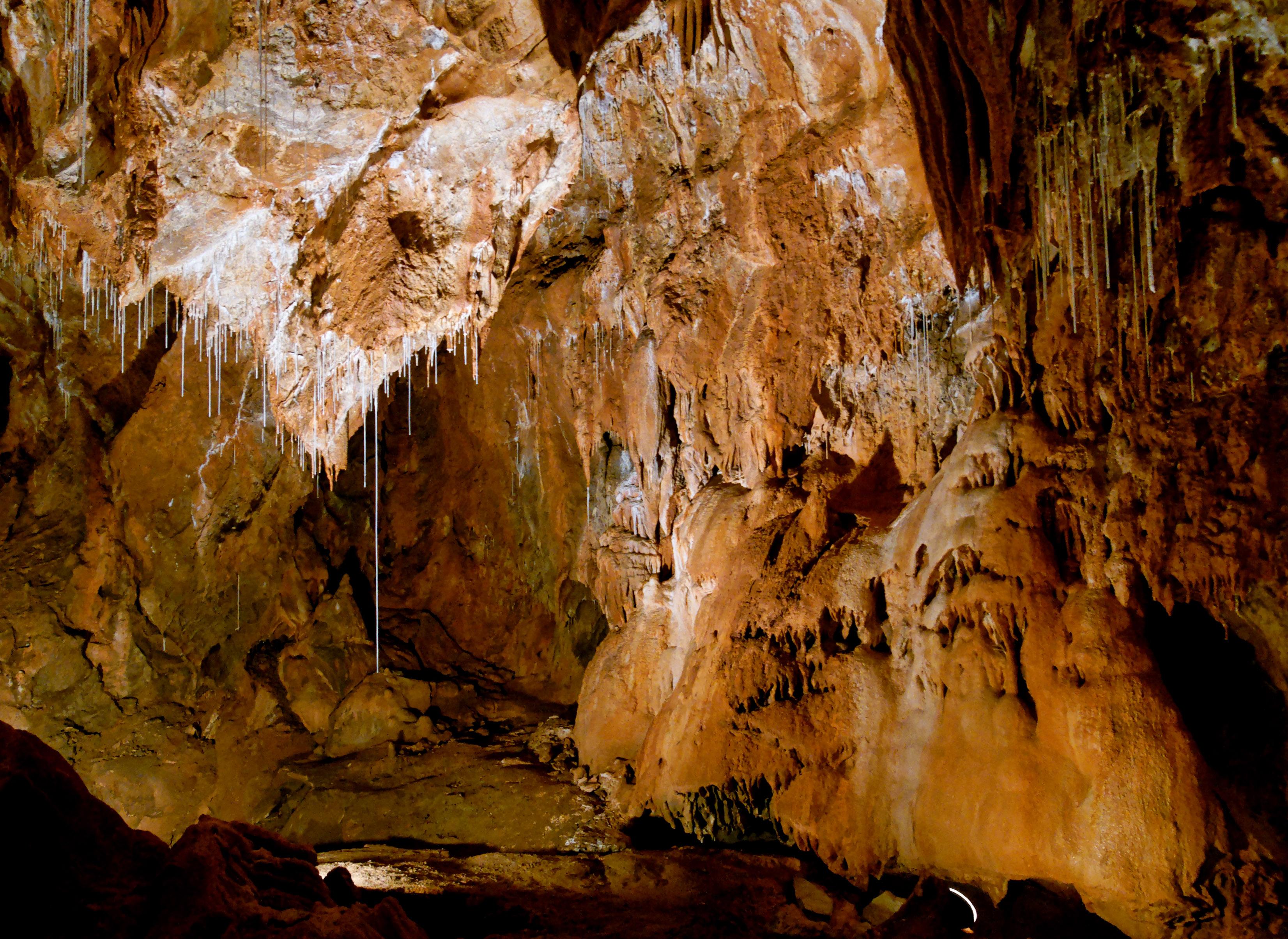 Gombasecká jaskyňa / Zdroj: Wikipedia