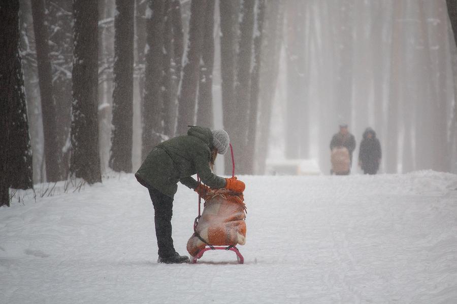 Prechádzka s dieťaťom v mrazivom počasí na saniach. / Foto: Bigstock
