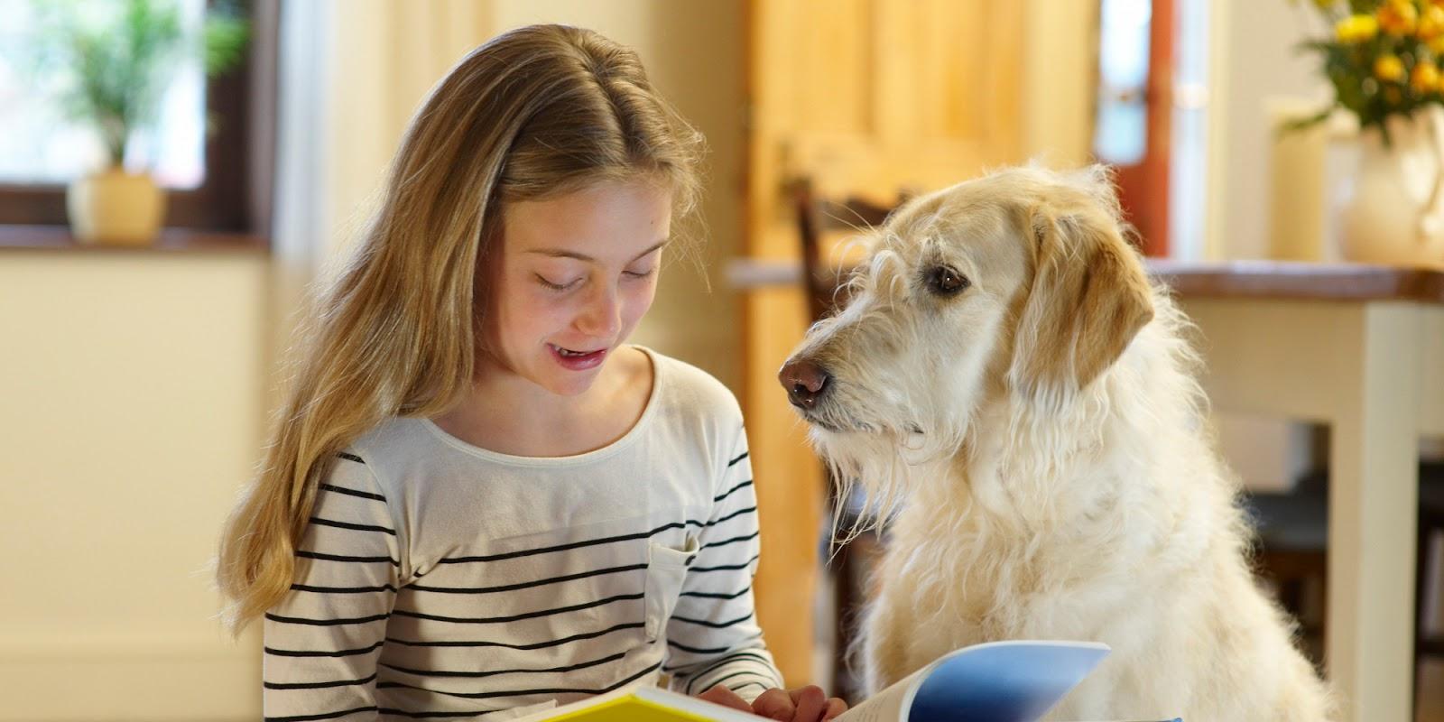 Čítanie deťmi psíkom sa nazýva terapia R.E.A.D. / Foto: Jan S. Gephardt