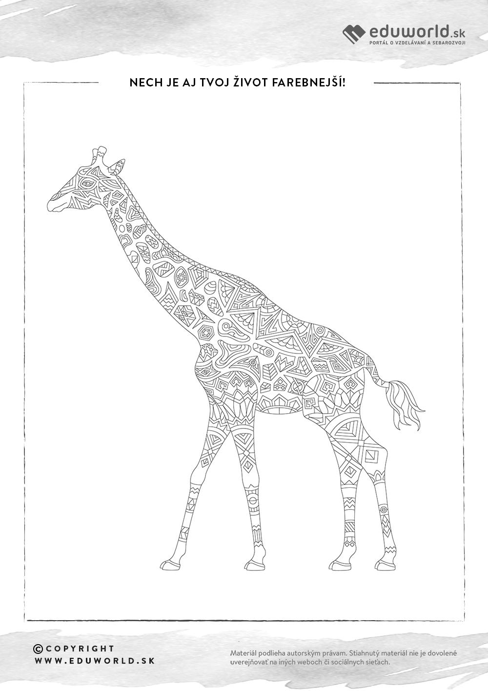 Antistresové omalovánky - žirafa / Zdroj: Eduworld