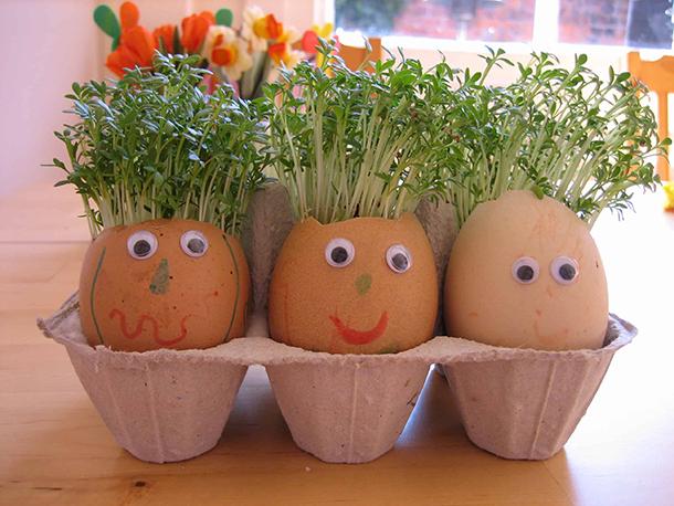 Vajíčkové kvetináče / Foto: nurturestore.co.uk