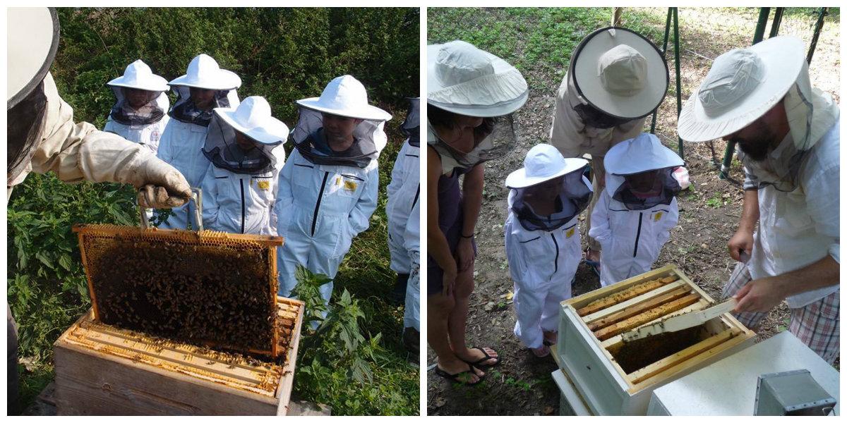 Foto: Včelí kRaj