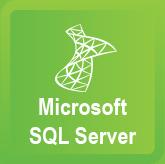 Microsoft SQL Server IV. Reporting Services
