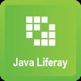 Java XIV. Liferay
