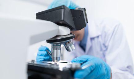 Srdcové bunky vytvorené v laboratóriu umožnili vedcom identifikovať potenciálny liek na prevenciu poškodenia srdca pri ochorení Covid-19
