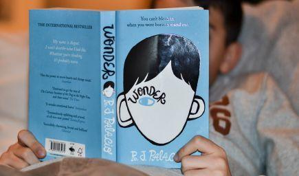 Knihy pre deti: Obyčajná tvár (R. J. Palacio)