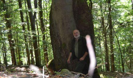Rozhovor: Iba kvalifikovaný lesník vie zachovať les pre ďalšie generácie