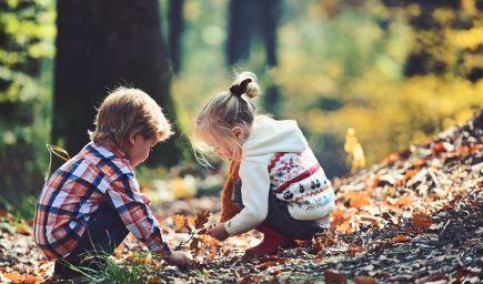 Deti, ktoré vyrastajú vo väčšom spojení s prírodou, sú psychicky zdravšie aj v dospelosti