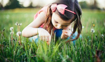 Aktivity a hry, ktoré pomáhajú deťom budovať  vzťah k prírode