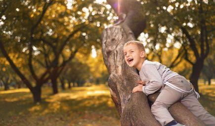 Nechajte deti loziť po stromoch, budú odolnejšie i šťastnejšie!