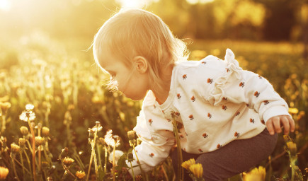 Je vaše dieťa orchidea alebo púpava?