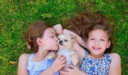 Ako viesť dieťa k zodpovednosti?