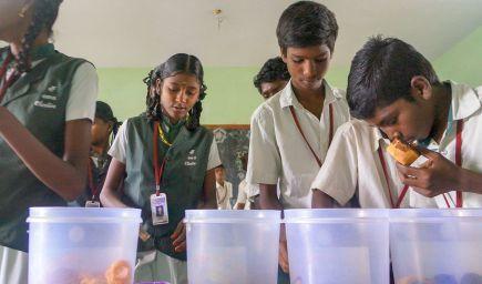 Obchody čestnosti v školách učia deti v Indii poctivosti
