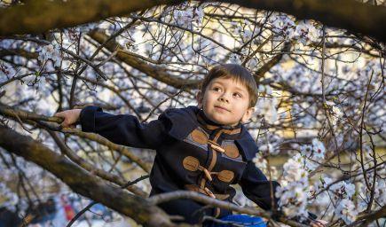 Ako v deťoch formovať morálnu, duchovnú a citovú odvahu?