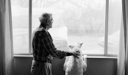 Príbeh na zamyslenie: Pes v nebi