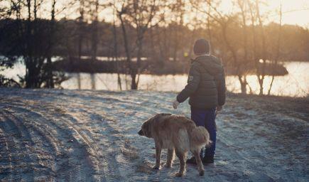 Jarné prázdniny ako prví absolvujú žiaci na strednom Slovensku