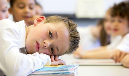 Učitelia nevnímajú poznatky, ktoré prinášajú neurovedy. Čo všetko by sa mohli naučiť o učení?