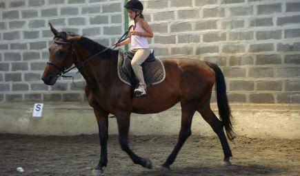 Kurz jazdy na koni