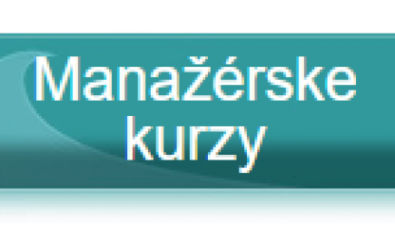 Kurz Leadership training