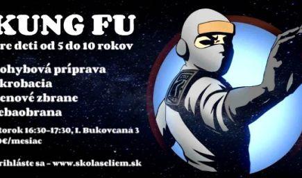 Kung fu pre  deti od 5 do 10 rokov - Devínska Nová Ves