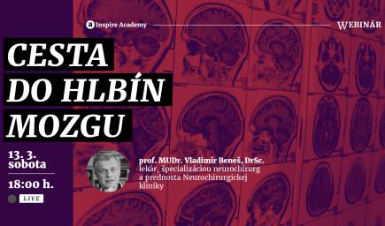 Vladimír Beneš: Cesta do hlbín mozgu
